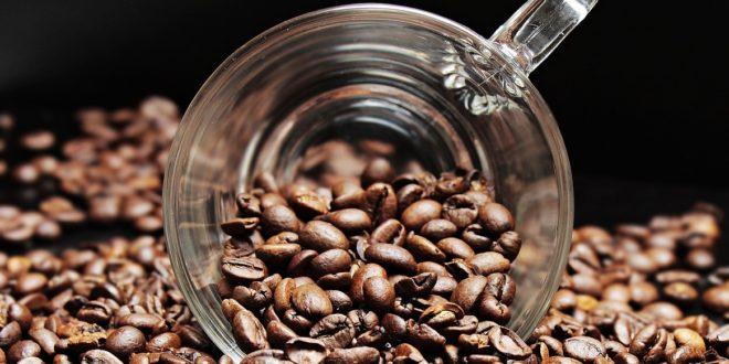 Café moulu ou café à dosette?