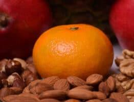 Pourquoi devez-vous consommer des protéines végétales ?