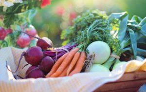 Panie de fruits et legumes