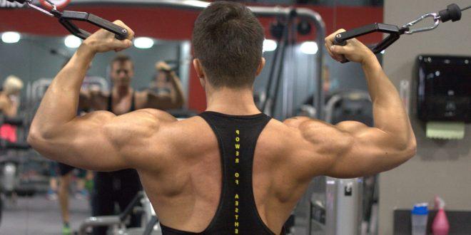 Comment prendre en masse musculaire?