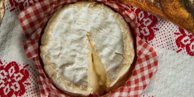 4 recettes faciles à préparer à base de Camembert