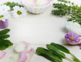 Qu'est ce que la phytothérapie ?