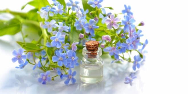 Les avantages d'utiliser des hydrolats de fleurs