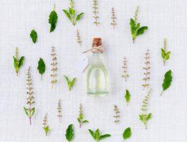 Les remèdes à base de plantes pour agir sur le diabète